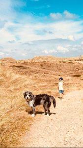 Hund och barn i medelhavsmiljö